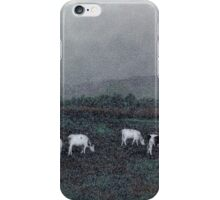 Longview Cows iPhone Case/Skin