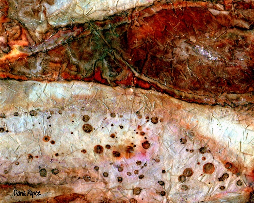 Sedimentary Rock 2 by Dana Roper