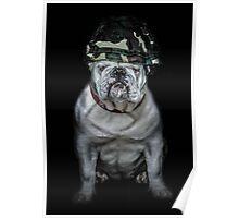 Private Bulldog 2 Poster