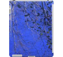 water and sky  iPad Case/Skin