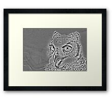 Metal Owl Framed Print