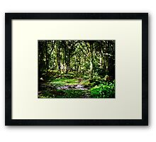 Forest of Bere Hampshire UK Framed Print