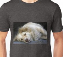 ...eyes of trust and love... Unisex T-Shirt