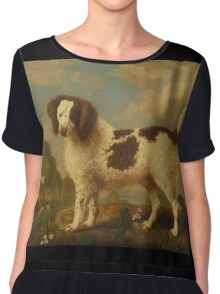 George Stubbs - Brown and White Norfolk or Water Spaniel 1778 Chiffon Top