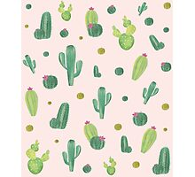 Cactus pattern Photographic Print