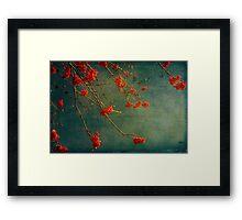 Berry nice Framed Print