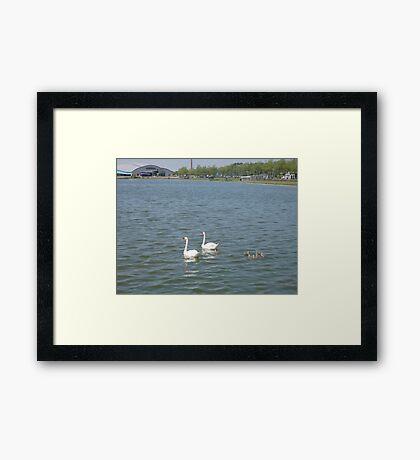 Spacy environment Framed Print