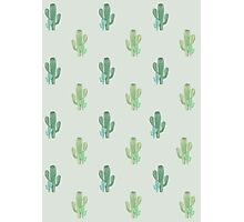 Cactus pattern #2 Photographic Print