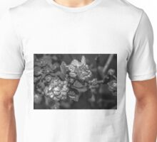 The Watery Pearl Unisex T-Shirt