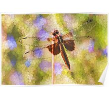 Bubbles The Dragonfly Poster
