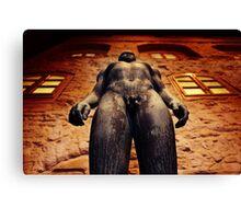 naked man Canvas Print