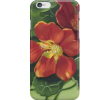 Indian cress - acrylic on canvas iPhone Case/Skin