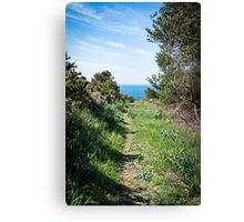 Footpath to the coast Canvas Print