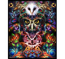 Visionary Owl Photographic Print