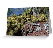 Cactus Garden 3 Greeting Card