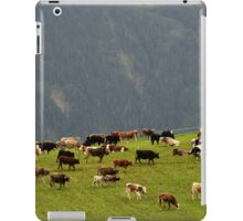 Cattle On Mountain Pasture iPad Case/Skin