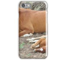 Newborn Foal iPhone Case/Skin