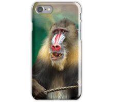 Mandril Baboon iPhone Case/Skin