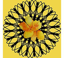 Watercolor yellow daffodil  on a digital spiral web Photographic Print