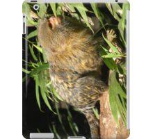 Pygmy Marmoset iPad Case/Skin