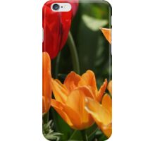 Tulips in Orange and Red iPhone Case/Skin