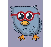 Red Eyeglasses Owl Photographic Print