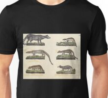 Naturgeschichte in Bildern mit erläuterndem Text E Strack 1820 Lief 1 Mammals 012 Unisex T-Shirt
