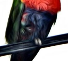 Rainbow Lorikeet Photo Painting Sticker