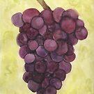 grapes by Avé Rivera