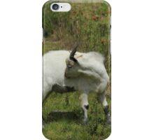 Goat in a Field of Wildflowers iPhone Case/Skin