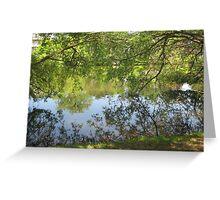 tree branch pond mirror  Greeting Card