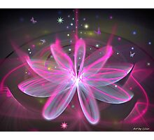 Magical Flower - Pink Lily Photographic Print