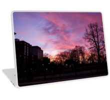 Sunset at Boston Common 3/1/16 Laptop Skin