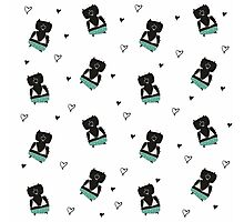 Teddies in swimming suits Photographic Print