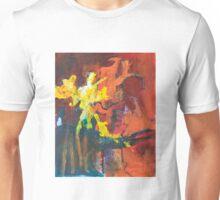 Fireworks II Unisex T-Shirt