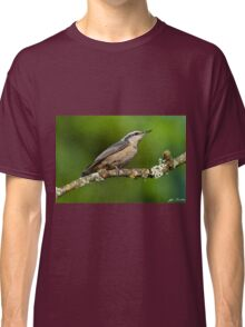 Red Breasted Nuthatch in a Tree Classic T-Shirt