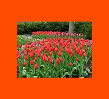 Bed of Reds - Keukenhof Gardens Womens Fitted T-Shirt