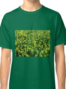 A Riot of Daffodils and Tulips - Keukenhof Gardens Classic T-Shirt