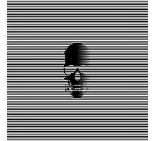 Stripy Skull Photographic Print