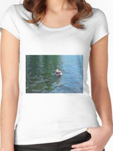 Swan in the water in the park. Women's Fitted Scoop T-Shirt