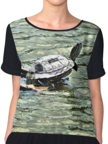 Red-eared Sliders Turtle Chiffon Top
