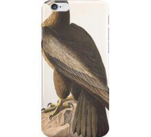 John James Audubon - The Bird of Washington, or Great American Sea Eagle. Falco washingtoniensis Male 1827 iPhone Case/Skin