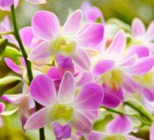 Softly Softly Orchids Sticker