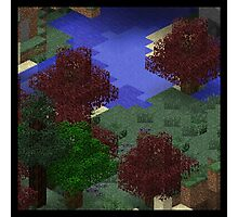 Map Generation - Lake and Forest Photographic Print