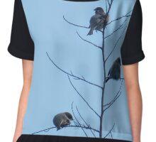 sparrows Chiffon Top
