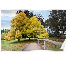 Golden Valley Tree Park Poster