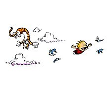 Calvin And Hobbes Fly Photographic Print