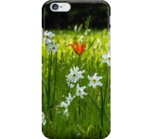 Stranger in our Midst iPhone Case/Skin
