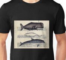 Naturgeschichte in Bildern mit erläuterndem Text E Strack 1820 Lief 1 Mammals 081 Unisex T-Shirt