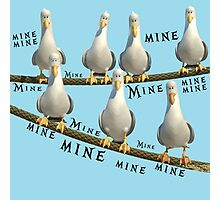 Mine! Seagulls from Finding Nemo Photographic Print